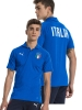 Polo Puma Italia FIGC Casual Performance short sleeves Blue cotton man 2018