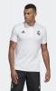 Real Madrid Adidas Polo Maglia Bianco 2019 Cotone AssetName
