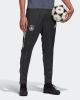 DFB Suit Pants Germany Adidas Training EURO 2020 Carbon Man