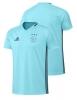 Ajax Amsterdam Adidas Maglia Allenamento Training maniche corte Azzurro 2016 17