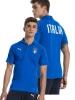 Italia FIGC Puma Polo Maglia Azzurro Casual Performance 2018 Cotone