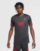 Training Shirt LIVERPOOL LFC Nike Breathe strike Top 2020 21 Gray Original Man
