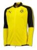 Borussia Dortmund bvb 09 Puma Giacca Allenamento Training Giallo Poly Uomo