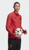 training sweatshirt RBFA Belgium adidas Half zip red Euro 2020