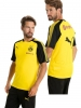 Training Jersey Shirt Borussia Dortmund BvB 09 Puma 2017 18 yellow man