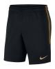 Training shorts Inter FC  Nike Dry Strike Men 2019 20 Black