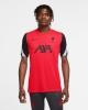 Training Jersey LIVERPOOL LFC Nike Breathe strike Top 2020 21 UEFA CHAMPIONS LEAGUE Red Original Man