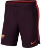 Trainingshose AS Roma Nike Squad Herren rotbraun 2018 19
