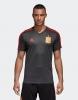 Training Top Trikot Shirt Spanien Adidas Weltmeisterschaft 2018 Herren Grau Original