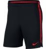 Turchia Turkey Nike Pantaloncini Shorts Dry Squad Training Mondiali Russia 2018