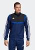 Präsentationsjacke Adidas Tiro 19 Climalite Herren Blau