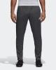 Adidas Formotion Pantaloni tuta Pants Suit Tango Training Grigio Uomo 2018 19