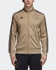 Ajax Amsterdam Adidas Giacca Allenamento 2018 19 Pes Versione Panchina Oro