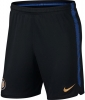 Inter fc Nike Pantaloncini Shorts Dry Squad Training Nero 2018 19